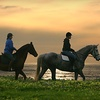 Up to 67% Off Horse Riding in Half Moon Bay