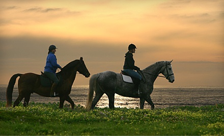 2-Hour Intro to Horsemanship and Riding Session for 2 with Complimentary Wine or Champagne (a $240 value) - Blue Moon Riding School in Half Moon Bay