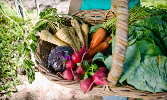 Anner's Wellness Works - Riverview: $35 for a One-Year Co-Op Membership and One Bag of Produce or Meat at Anner's Wellness Works ($78 Value)