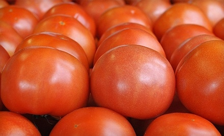 $10 Groupon to Tomato Land - Tomato Land in Tallahassee