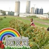 Rainbows End Farm - Conway: $8 for Pick-Your-Own Raspberries and Dig-Your-Own Mums Plus 15% Off Jam at Rainbows End Farm in Fowlerville (Up to $16 Value)