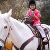 Half Off Horse-Riding Lessons in Bowling Green
