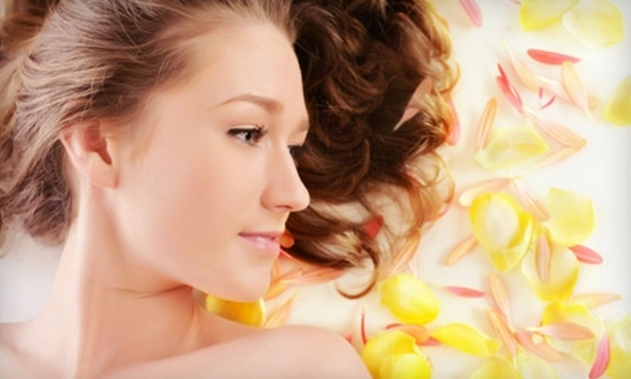 Cosmetology & Spa Institute - Multiple Locations: $45 for $100 Worth of Spa and Salon Services at Cosmetology & Spa Institute. Two Locations Available.