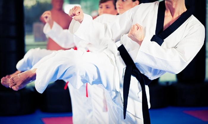 Relson Gracie Jiu-Jitsu - Schuylerville: 5, 10, or 20 Jujitsu Classes at Relson Gracie Jiu-Jitsu in the Bronx (Up to 90% Off)