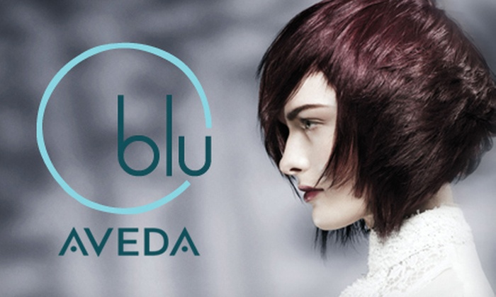 Blu Aveda Salon - Arcadia: One, Three, or Five Blowouts with Hair-Spa Treatments at Blu Aveda Salon (Up to 67% Off)