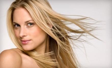 Aviation Blonde Hair Design - Aviation Blonde Hair Design in Victoria