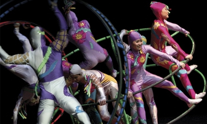 Cirque D'Or - Rochester Hills: One Ticket to Cirque D'Or at Meadow Brook Music Festival in Rochester Hills. Four Options Available.