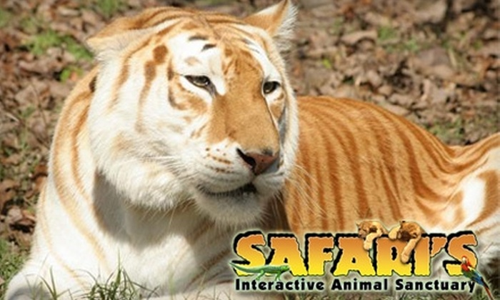 Safari's Interactive Animal Sanctuary - Coweta: $14 for Family Four Pack, Including Admission for Four and Four Packs of Feeding Treats, at Safari's Interactive Animal Sanctuary (Up to $28 Value)