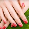Venus Nails and Day Spa - Venus Nails and Day Spa: $25 Worth of Nail Services