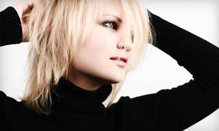 Synergy Hair Design - Orland Park: $55 for a Full Set of Highlights, Haircut, Blow-Dry, and Style at Synergy Hair Design in Orland Park (Up to $175 Value)