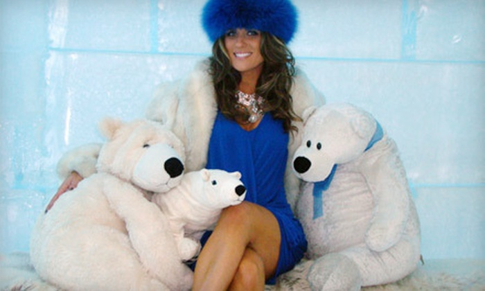 Icebar - Southwest Orange: Arctic-Themed-Bar Night with Fur Coats for Two or Four at Icebar (Up to 59% Off)