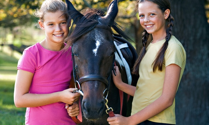 My Saddle Brook Farm - Montgomery: Birthday Party with Pony Rides at My Saddle Brook Farm (Up to 50% Off)