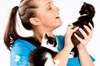 White Cross Vets - White Cross Vets, Walkden Manchester: Vaccination and Health Check For Dog, Cat or Rabbit, £15 at White Cross Vets (58% Off)