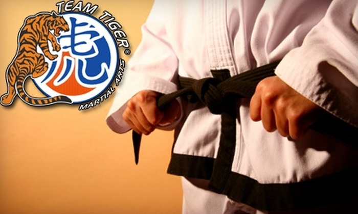 Team Tiger Martial Arts - McAllen: $37 for One Month of Taekwondo or Mixed Martial Arts Classes at Team Tiger Martial Arts ($75 Value) in McAllen