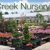 Half Off at Pryor Creek Nursery