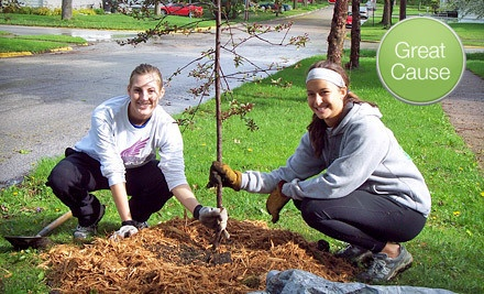 $20 Donation to Trees Forever - Trees Forever in Marion