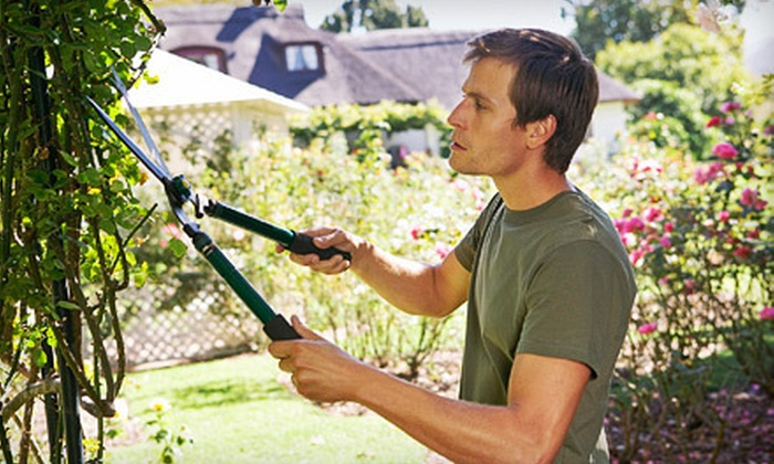 S&B Remodeling & Construction - Fort Worth: Two, Four, or Eight Hours of Landscaping Services from S&B Remodeling & Construction (Up to 62% Off)