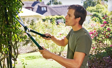 2 Hours of Landscaping Services (a $250 value) - S&B Remodeling & Construction in
