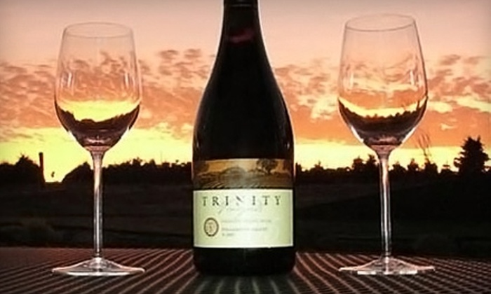 Trinity Vineyards - Salem: $6 for a Wine Tasting for Two at Trinity Vineyards ($12 Value)