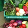 54% Off Organic Produce from Grant Family Farms