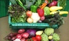 Grant Farms - Multiple Locations: $25 for One Organic Produce Box from Grant Family Farms in Wellington ($54.14 Value)