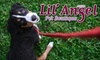 Lil' Angel Pet Boutique & Gallery - Washington Park: $15 for $30 Worth of Purchases at Lil' Angel Pet Boutique & Gallery