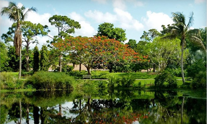 Half Off Garden Membership in West Palm Beach - Mounts Botanical ...