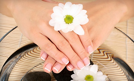 Signature Manicure with Choice of French or Regular Polish (Up to a $30 Value) - Polish Nail and Day Spa in Tampa