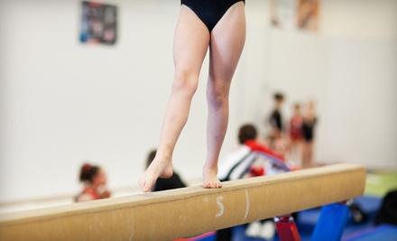 Eagle Ridge Gymnastics - Eagle Ridge Gymnastics in Rio Rancho