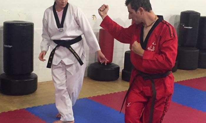 Family Taekwondo Center - South Venice: 10 Personal Training Sessions at Family Taekwondo Center (65% Off)