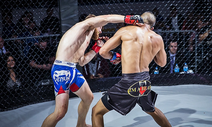 Rise Mixed Martial Arts - Sears Centre Arena: Tickets to Rise Mixed Martial Arts Event with Optional Beer at Sears Centre Arena on Saturday, June 20 (Up to 69% Off)