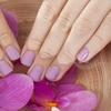 56% Off Spa Manicure and Pedicure