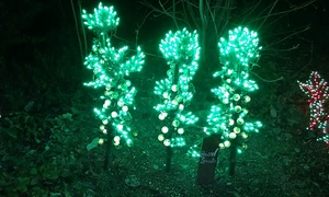 Garden d'Lights: Admission for Two or Four to Garden d'Lights (30% Off)