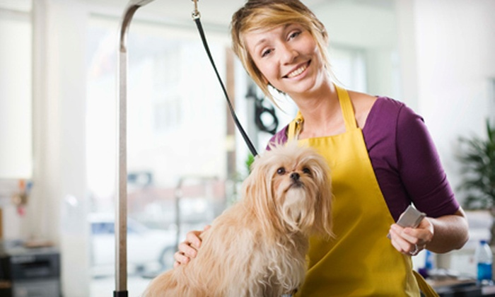 Diva Dogs Inc. - San Jose: Mobile Dog Grooming for a Small, Medium, or Large Dog from Diva Dogs Inc. (Up to 52% Off)