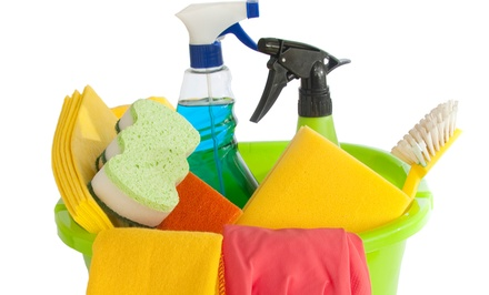 Cleaning and Household Supplies at The Cleaning Mart (45% Off)