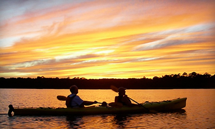 Ripple Effect Ecotours - Marineland: Single or Tandem Four-Hour Kayak Rental from Ripple Effect Ecotours in St. Augustine