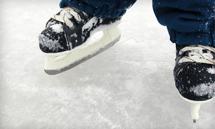 Glenview Park District, Glenview Ice Center - The Grove National Historic Landmark: Ice-Skating with Rentals for Two or Four at Glenview Park District, Glenview Ice Center (Up to 56% Off)