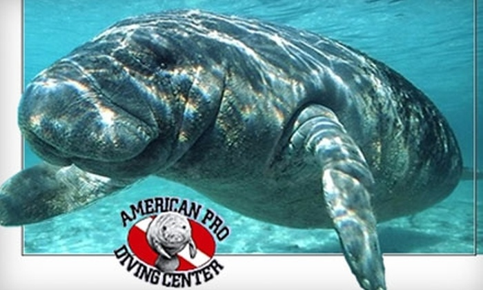 American Pro Diving Center - Crystal River: $26 for Guided Snorkel with Manatees from American Pro Diving Center in Crystal River