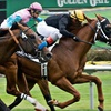Golden Gate Fields - $25 Horseracing Package for Two