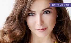 Body Logic School of Esthetics: One or Three 60-Minute Classic Facials at Body Logic School of Esthetics (Up to 61% Off)