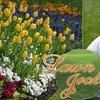 Lawn Jockey - Lewisville: $18 for $30 Worth of Flower Installation from Lawn Jockey