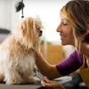 Up to 53% Off Pet Grooming and Pet Products