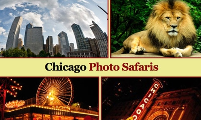 Chicago Photo Safaris: $49 for One Travel or Night Photography Workshop from Chicago Photo Safaris ($102 Value)