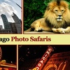 52% Off at Chicago Photo Safaris