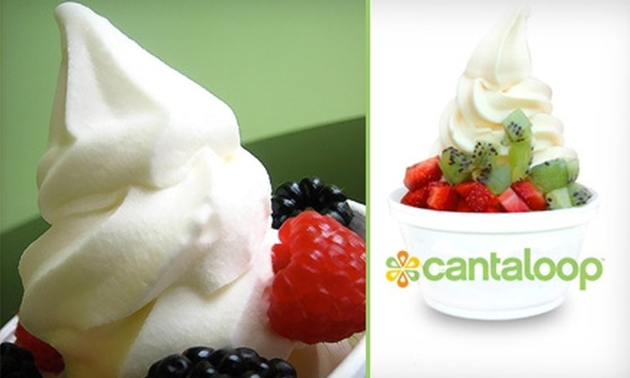 Cantaloop - Meredith Parkwood: $5 for $10 Worth of Frozen Yogurt from Cantaloop