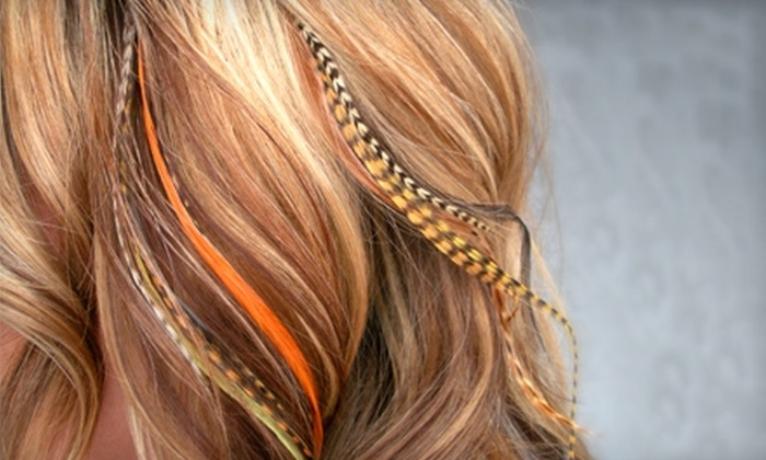 Final Cut Hair Studio & Tranquility Lounge - Kearny Mesa: $15 for Feather Hair Extensions at Final Cut Hair Studio & Tranquility Lounge ($30 Value)
