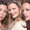 Expose, Brenda K. Starr, and Pretty Poison – Up to 52% Off Concert