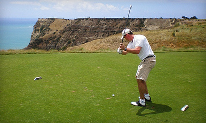 Momentum Golf Academy - Milton: $39 for a 45-Minute Video Golf Lesson with V1 Swing Technology at Momentum Golf Academy in Milton ($95 Value)