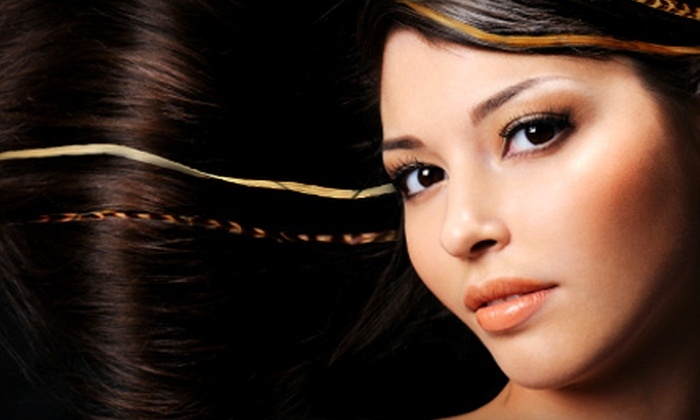 Salon Lux - Cranston: Hair Feather and Tinsel Hair-Extensions with Hair Services or Scrub and Rub Facial at Salon Lux in Cranston