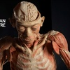 """Up to Half Off at """"Our Body"""" Exhibit and Saskatchewan Science Centre"""